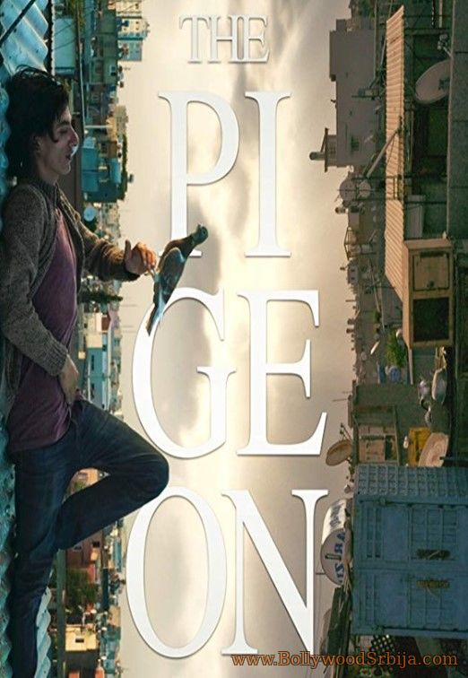 The Pigeon (2018)